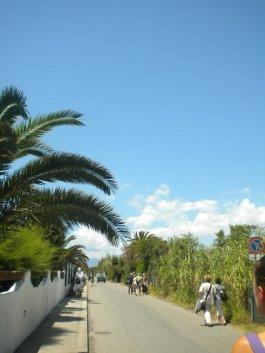 A beautiful Island road.