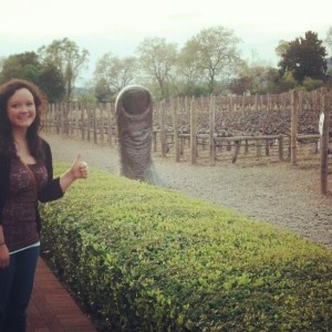 Napa Valley; winery.